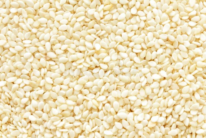 Download Fundo do sésamo imagem de stock. Imagem de alimento, cuisine - 29843589