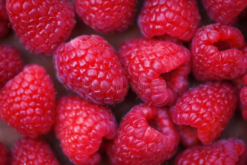 Fim fresco da textura da framboesa acima da opinião superior do fundo do fruto das framboesas vermelhas foto de stock