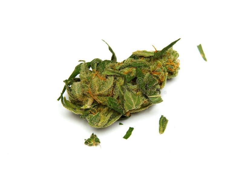 Fim médico da marijuana acima imagens de stock royalty free