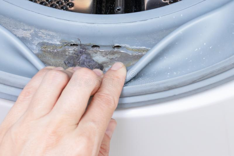 Fim mofado sujo da borracha e do cilindro de selagem da m?quina de lavar acima Molde, sujeira e limescale na m?quina de lavar Apa fotos de stock