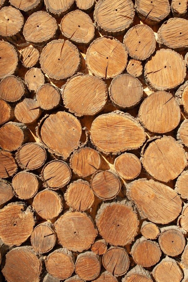 Fim redondo de madeira do fundo da madeira acima Teste padrão de madeira imagem de stock