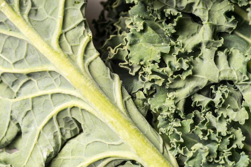 Fim verde saudável orgânico da couve acima, macro fotos de stock
