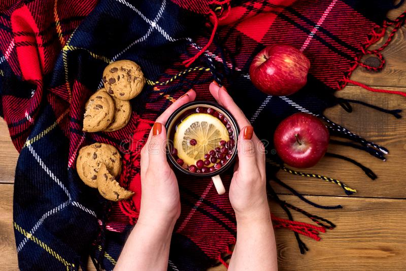 Fimale Hands are holding Cup of Hot Berries Lemon Tea Cookies Red Apples Concept of Autumn Breakfast Woolen Blamket Wooden Backgro. Und Top View Flat Lay stock photography