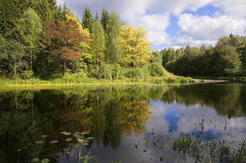 Fin août sur la rivière Mezha Région de Kostroma images stock