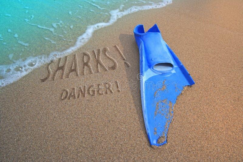 Download Fin Bitten And Sharks Danger Stock Image - Image: 16250495