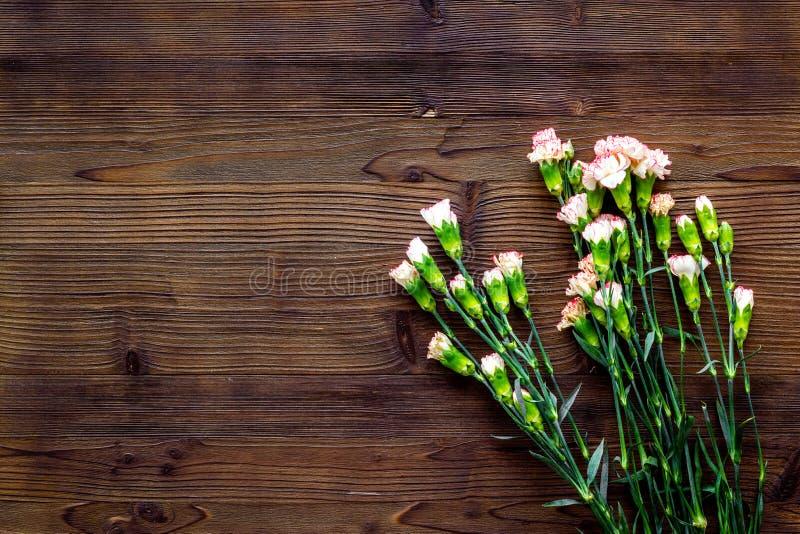 fin blommafjäder Liten rosa nejlika på mörkt träutrymme för bästa sikt för bakgrund för text arkivfoton