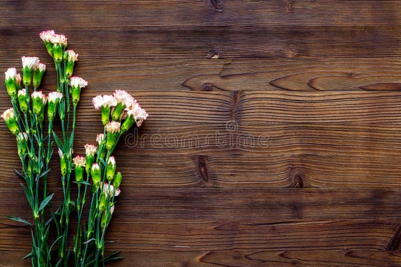 fin blommafjäder Liten rosa nejlika på mörkt träutrymme för kopia för bästa sikt för bakgrund fotografering för bildbyråer