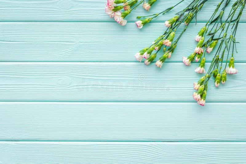 fin blommafjäder Liten rosa nejlika på utrymme för bästa sikt för bakgrund för blå turkos träför text royaltyfria bilder