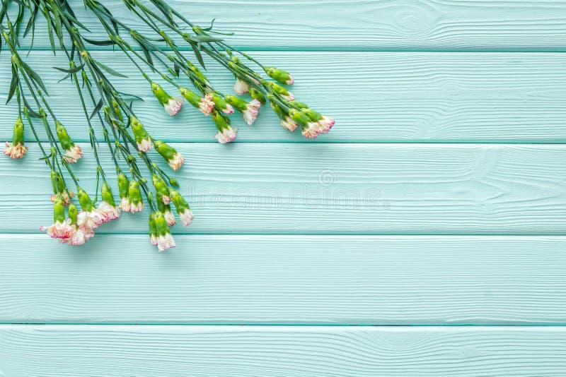 fin blommafjäder Liten rosa nejlika på utrymme för bästa sikt för bakgrund för blå turkos träför text royaltyfri bild