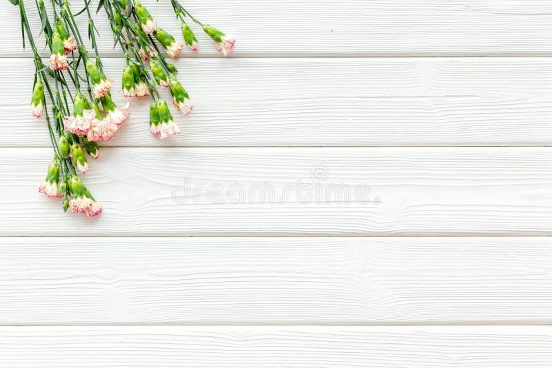 fin blommafjäder Liten rosa nejlika på vitt träutrymme för kopia för bästa sikt för bakgrund royaltyfri foto