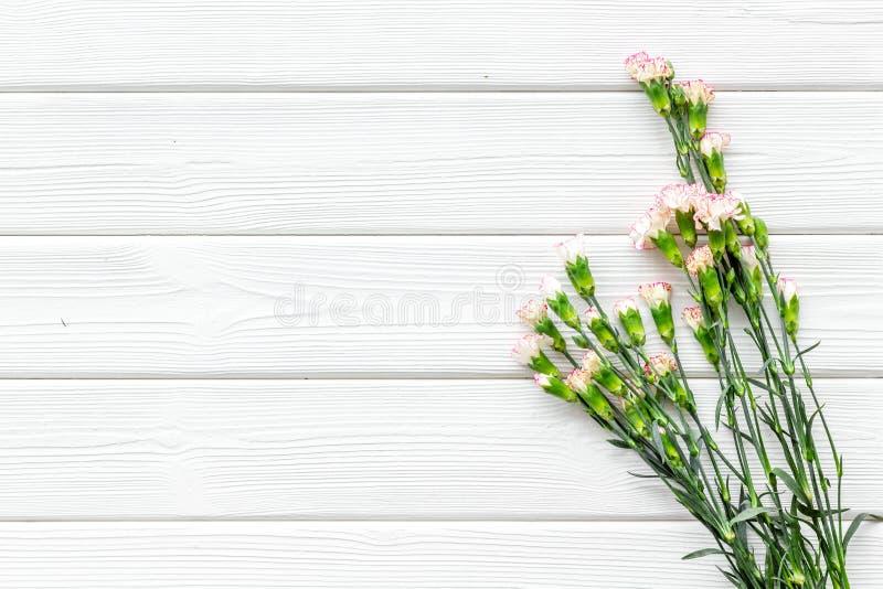 fin blommafjäder Liten rosa nejlika på vitt träutrymme för kopia för bästa sikt för bakgrund royaltyfri bild