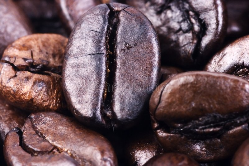 Fin de grain de café vers le haut images libres de droits