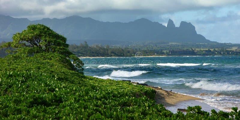 Fin de l'après-midi, plage de Wailua photo stock