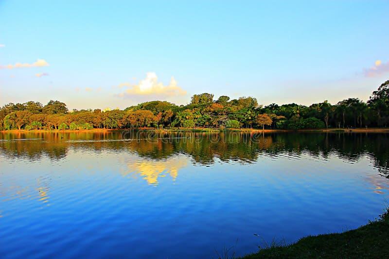 Fin de l'après-midi sur un lac photo libre de droits