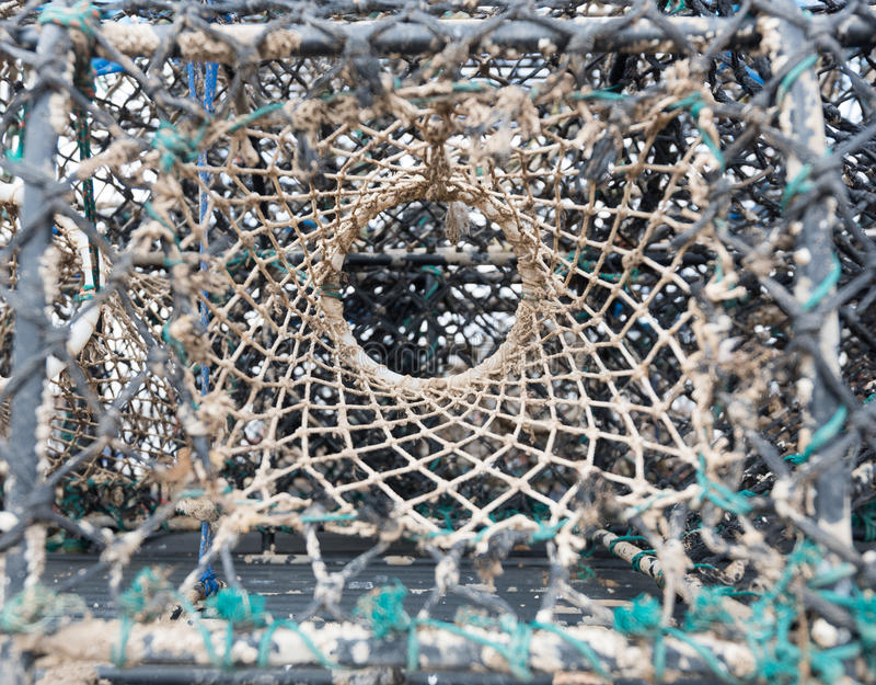 Fin de pot de homard  photo stock