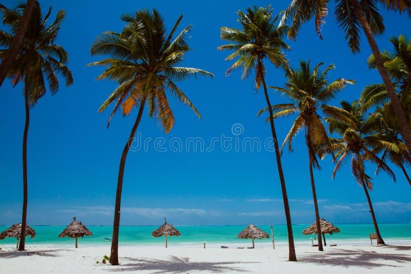 Fin de semana en la playa azul del océano de Zanzíbar fotografía de archivo