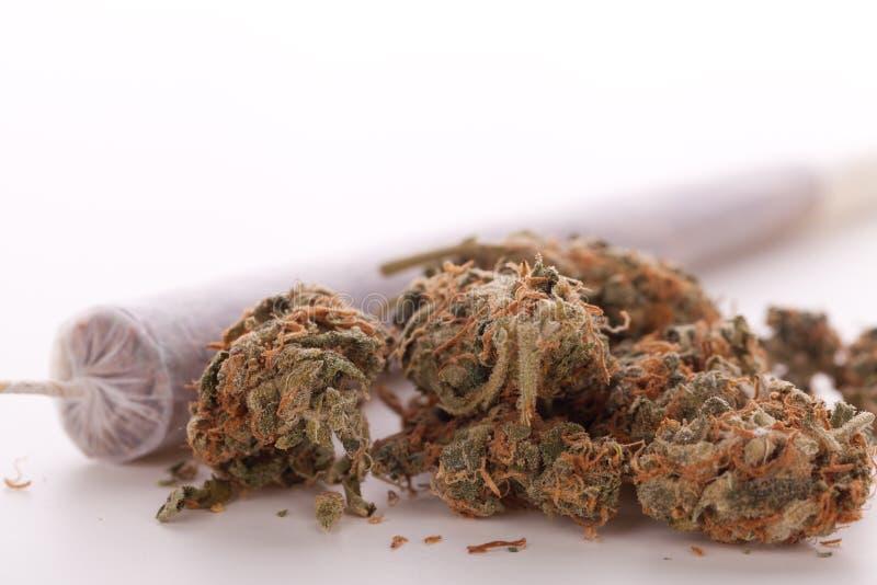 Fin des feuilles et du joint secs de marijuana photographie stock