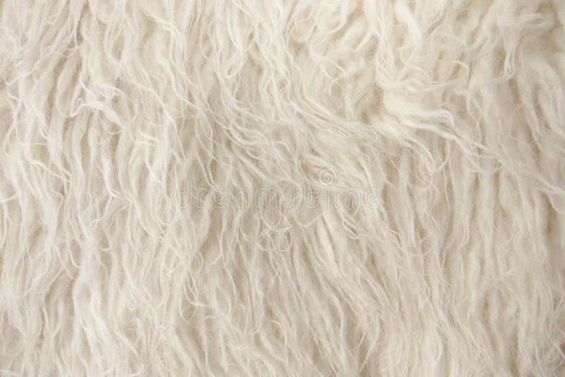 Fin en bois de fibre de couverture vers le haut image stock