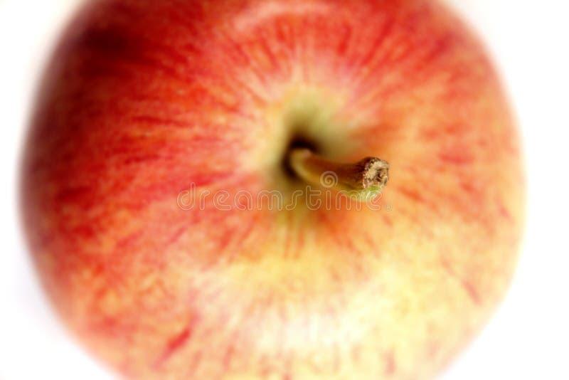 Fin fraîche de pomme vers le haut image libre de droits