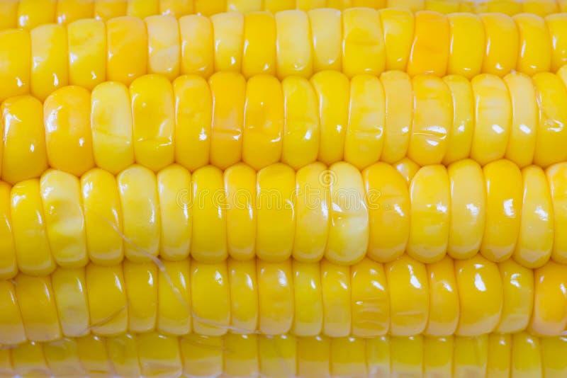 Fin jaune bouillie et cuite d'épi de maïs vers le haut de macro tiré Regard délicieux photographie stock libre de droits