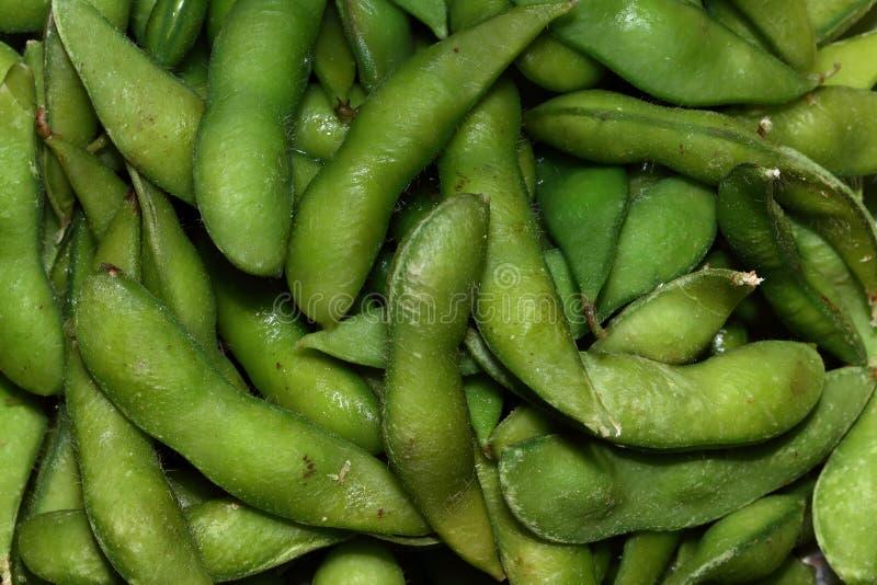 Fin jusqu'au soja vert ou à l'edamame image stock