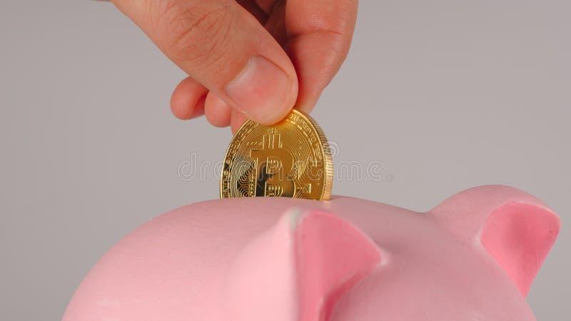 FIN : La main masculine jette le bitcoin dans une tirelire porcine rose photographie stock