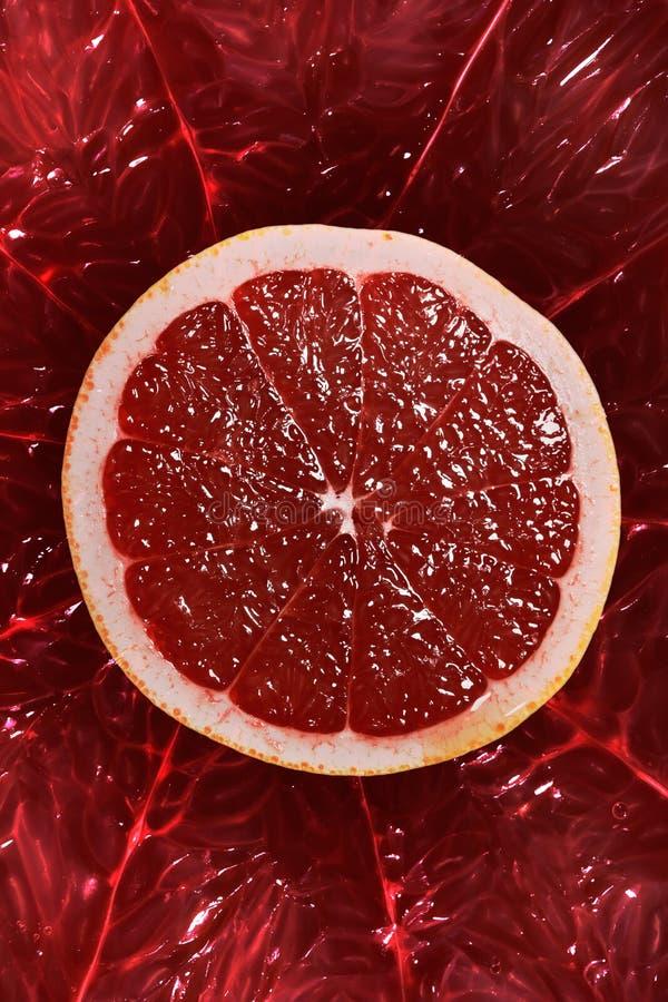 Fin orange rouge de section transversale de pamplemousse vers le haut image libre de droits
