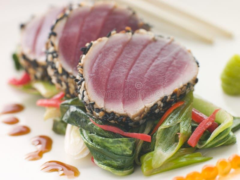 fin Psb przypalał materiału siewnego tuńczyka słodkiego sezamowego żółty obraz stock