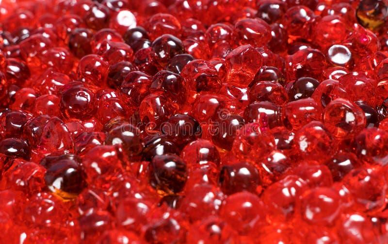 Fin rouge de caviar vers le haut photo libre de droits