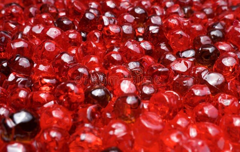 Fin rouge de caviar vers le haut image libre de droits