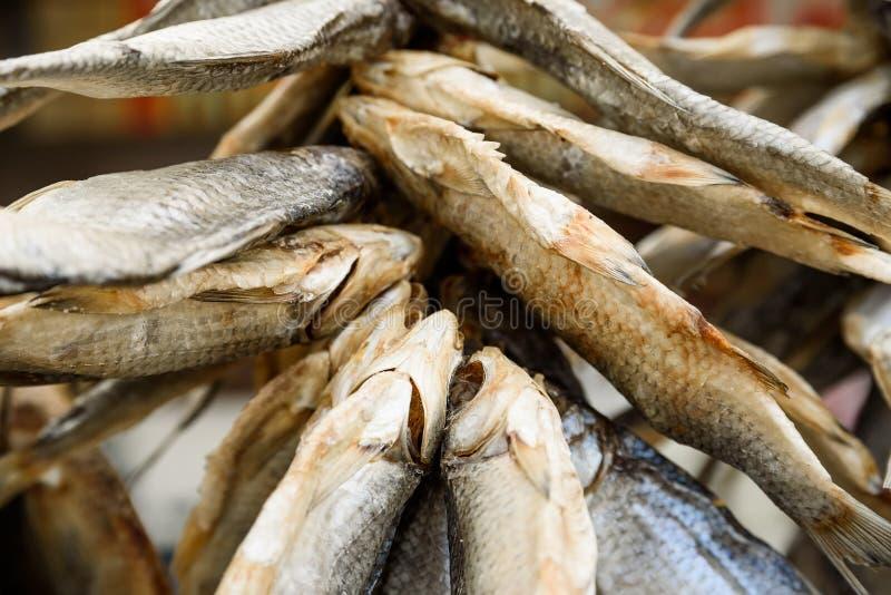 Fin sèche de poissons photo stock