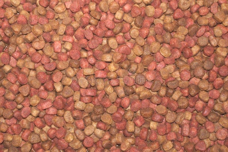 Fin sèche multicolore d'aliment pour animaux familiers, fond d'image photographie stock libre de droits