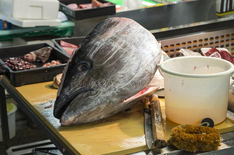 Fin Tuna Fish Head on Chopping Fish of selling fish display n th. E tsukiji fish market is the biggest wholesale fish and seafood product market in tokyo, japan stock images