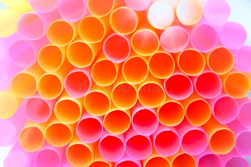 Fin vers le haut de rose coloré et de fond jaune de paille à boire photos libres de droits