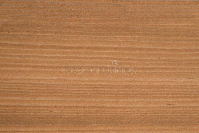 Fin vers le haut de texture/de fond en bois naturels de grain photos libres de droits