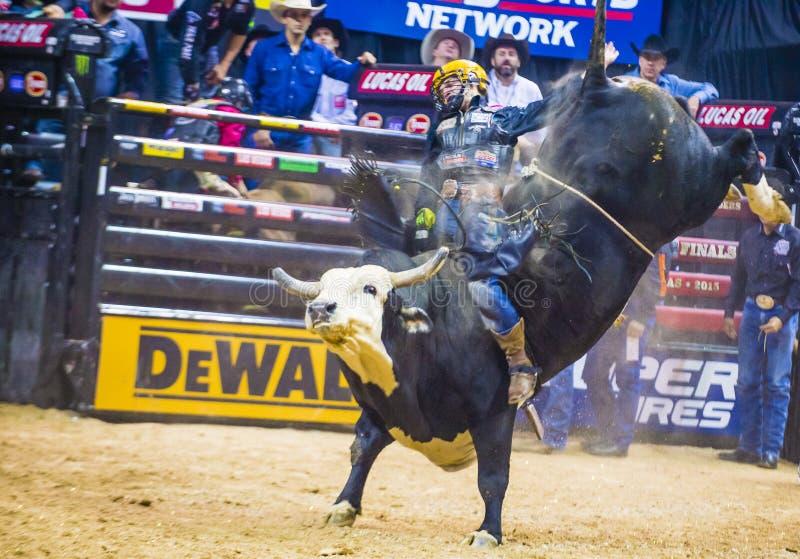 Finais do mundo da equitação do touro de PBR fotografia de stock royalty free