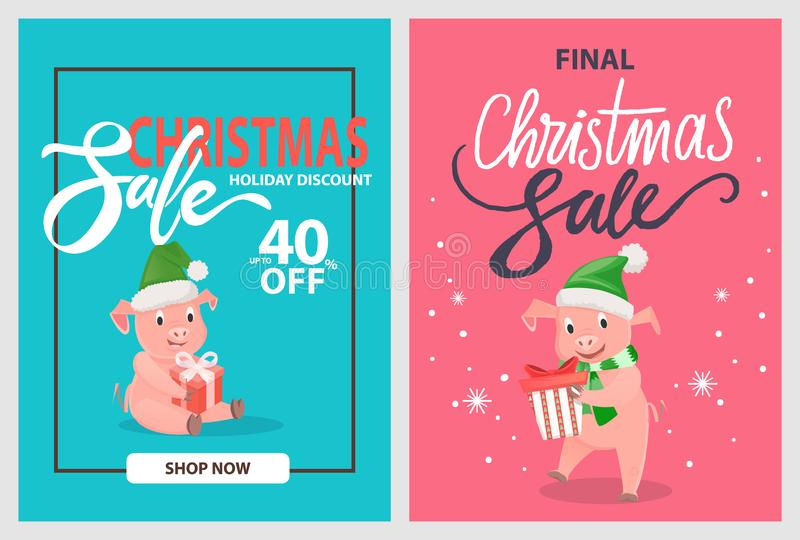 Final Christmas Sale Pigs and Piglets, Winter Hats royalty free illustration