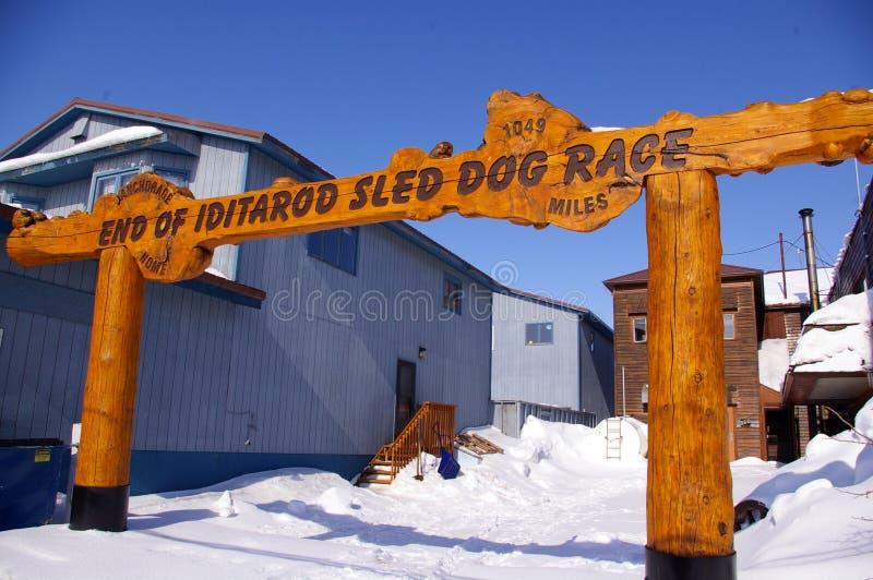 Final de Iditarod imagen de archivo libre de regalías