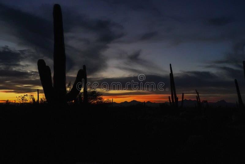 Final de la puesta del sol del desierto en Arizona imagen de archivo libre de regalías