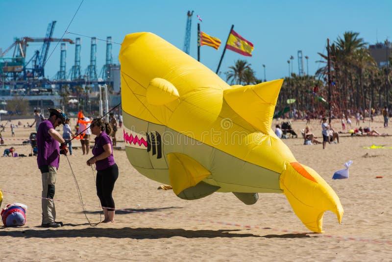 Final del vuelo para el tiburón fotos de archivo libres de regalías