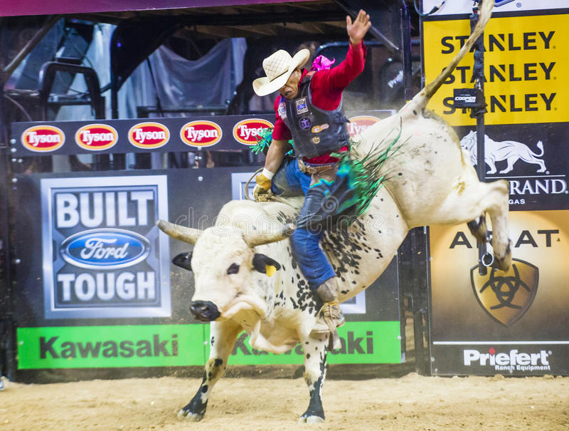 Finales del mundo del montar a caballo del toro de PBR fotografía de archivo libre de regalías