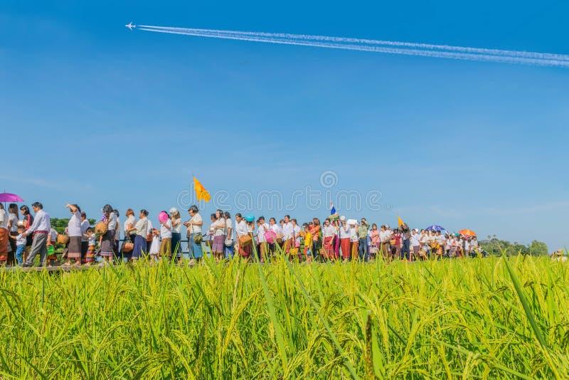 Finales tradicional del festival de la filantropía de Devo del día prestado en el puente en el arroz de arroz coloca en la provin foto de archivo libre de regalías
