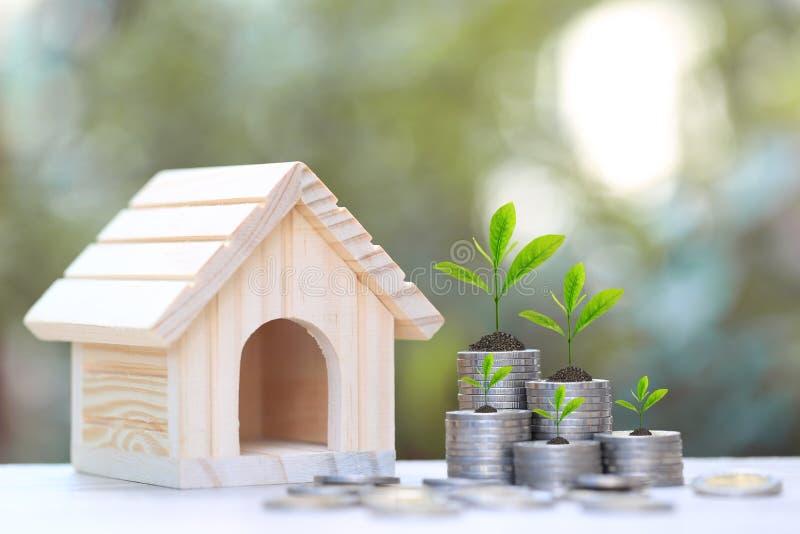 Finança, planta que crescem na pilha de dinheiro das moedas e casa modelo no fundo, no conceito verdes naturais das taxas de juro fotos de stock