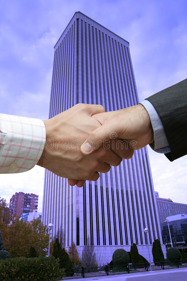 Free Finance Handshake Royalty Free Stock Photography - 3129027