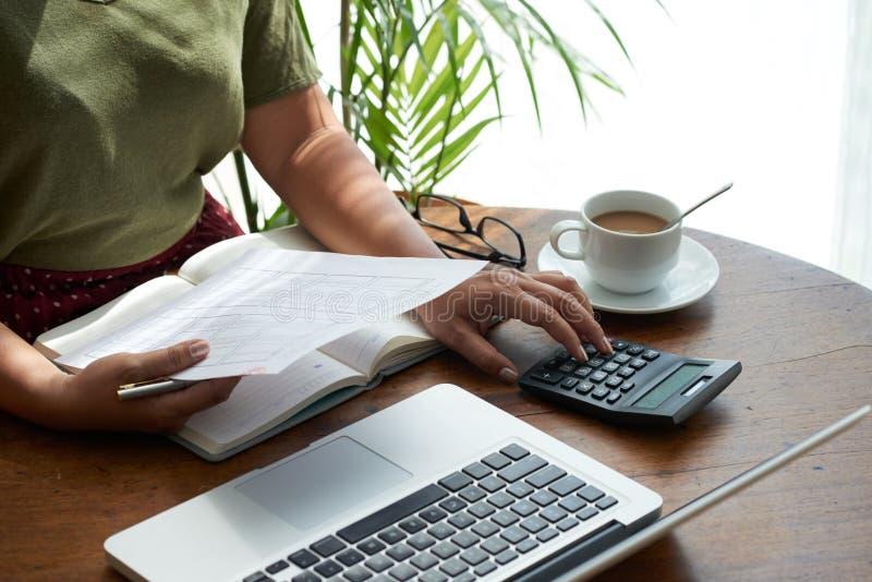 Financiële Manager Focused op het Werk stock afbeeldingen