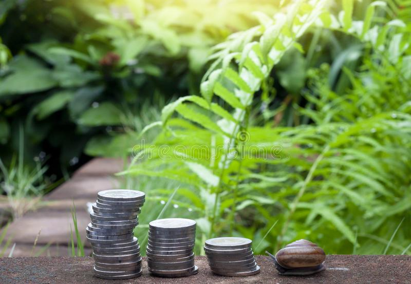 Financial of money and snail. royalty free stock photo