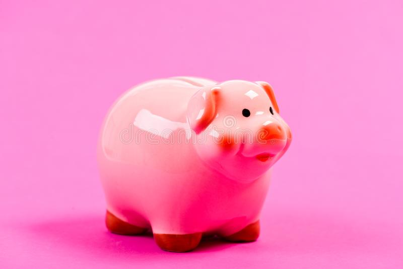 Financial education. Better way to bank. Piggy bank symbol of money savings. Piggy bank adorable pink pig close up stock photo