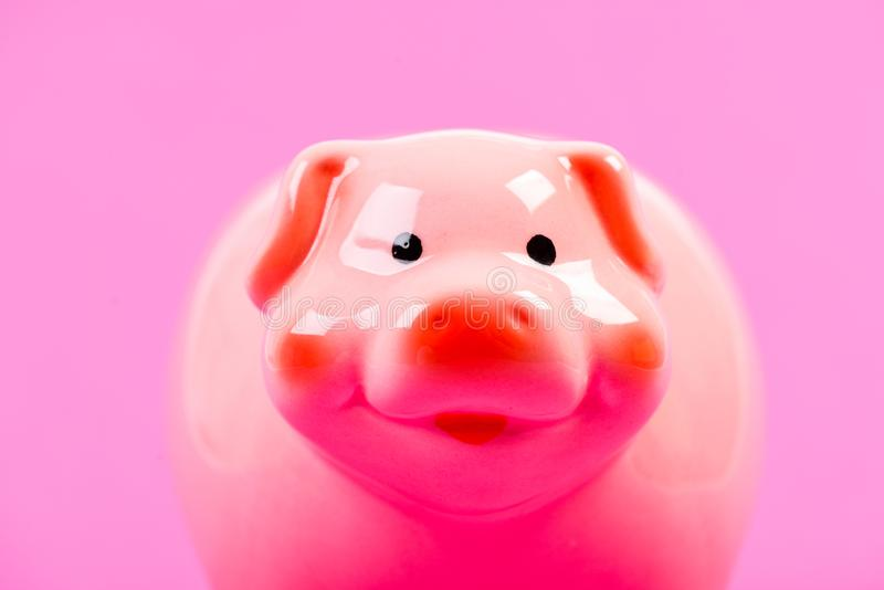 Financial education. Finances and investments bank. Better way to bank. Piggy bank symbol of money savings. Piggy bank. Adorable pink pig close up. Accounting royalty free stock image