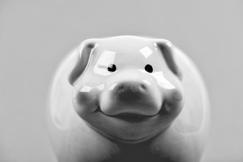 Financial education. Finances and investments bank. Better way to bank. Piggy bank symbol of money savings. Piggy bank royalty free stock photo