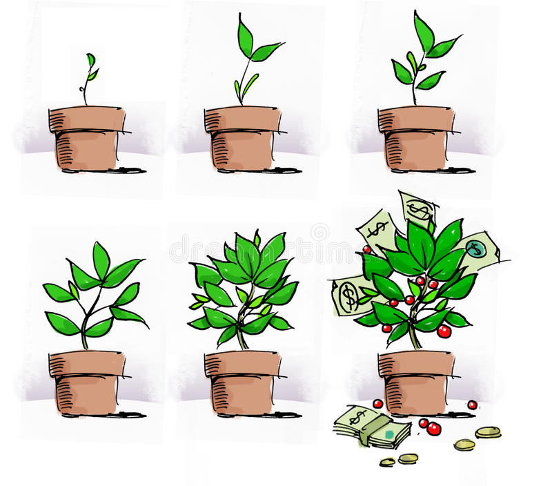 Financial Growth. Metaphor for financial growth illustrated with plant stock illustration